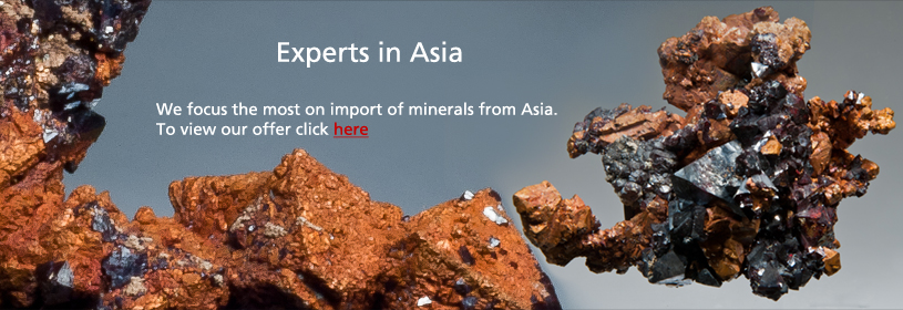 Experts in Asia